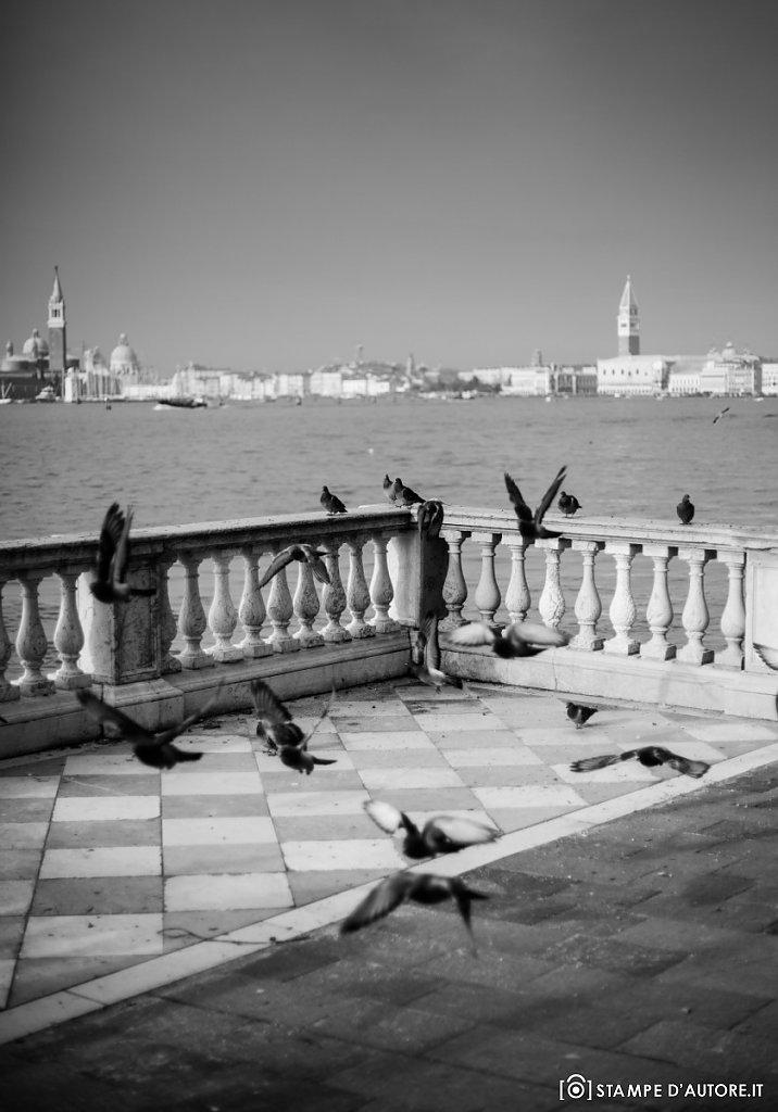 """""""Venezia, il volo"""