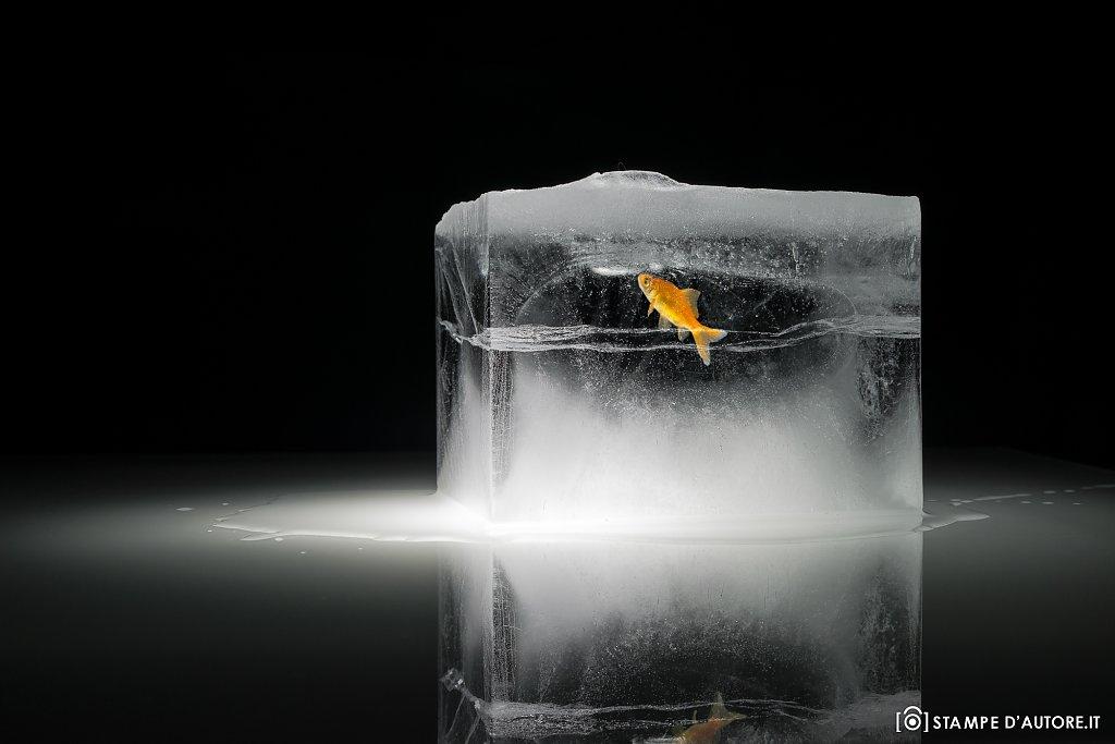 """""""Ghiaccio e acqua"""